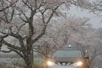 午前0時に避難指示が一部解除され、正午ごろから降り出した雨が雪に変わった大熊町の大川原地区=福島県大熊町で2019年4月10日午後5時21分、和田大典撮影