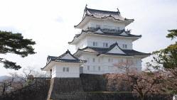 戦国大名・北条氏の居城として知られる小田原城=小田原城址公園で2016年3月31日、澤晴夫撮影