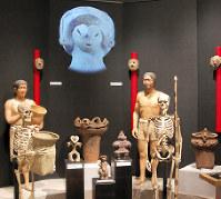 リニューアルされた縄文時代のコーナー=国立歴史民俗博物館で、伊藤和史撮影