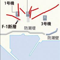泊原発 敷地内の断層