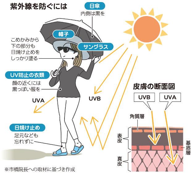 ない 紫外線 を もの 通さ