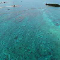 埋め立て工事が進む辺野古周辺。周囲は青い海に囲まれている=沖縄県名護市で2019年4月22日午前11時19分、小型無人機で森園道子撮影