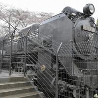 鉄道ファンの保存活動で迫力ある車体をきれいな状態で維持するデゴイチ=千葉県柏市で、橋本利昭撮影