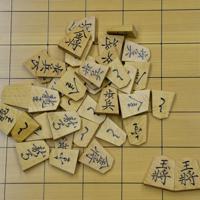 対局で使用される駒=岡山県倉敷市で2019年5月6日、加古信志撮影