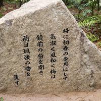 いなみ野万葉の森に新たに設置された碑。新元号ゆかりの序文が刻まれている=兵庫県稲美町国安で同町提供