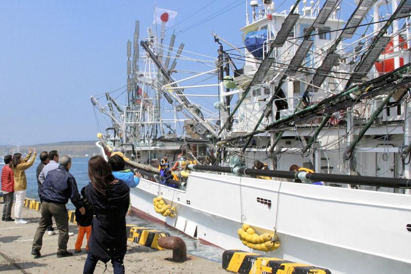 サンマ:根室などから公海に出漁 今月下旬にも流通へ /北海道   毎日新聞