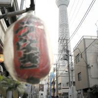 昔ながらの町並みが残る墨田区業平。奥は東京スカイツリー=墨田区で、吉田航太撮影