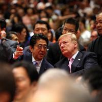 安倍晋三首相(中央左)の説明を聞きながら大相撲夏場所の取り組みを観戦するトランプ米大統領(同右)=東京・両国国技館で2019年5月26日午後5時14分、小川昌宏撮影