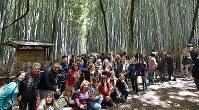 A group of foreign tourists are seen posing for a photo at the Arashiyama Bamboo Grove in Kyoto's Ukyo Ward on April 27, 2019. (Mainichi/Ai Kawahira)