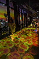 An image of a sunset is projected onto a window on the Tokyo Tower's observation deck, in Tokyo's Minato Ward, on May 31, 2019. (Mainichi/Kaho Kitayama)