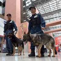 空港内を警戒する大阪府警の警備犬「JJ号」(手前)と「レオン号」=関西国際空港で2019年6月14日、平川義之撮影