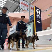 空港内を警戒する大阪府警の警備犬「レオン号」(手前)と「JJ号」=関西国際空港で2019年6月14日、平川義之撮影