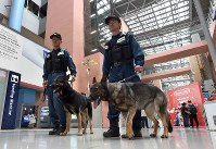 Osaka Prefectural Police's security dogs JJ, right, and Reon patrol a terminal building at Kansai International Airport in the southern part of Osaka Prefecture on June 14, 2019. (Mainichi/Yoshiyuki Hirakawa)
