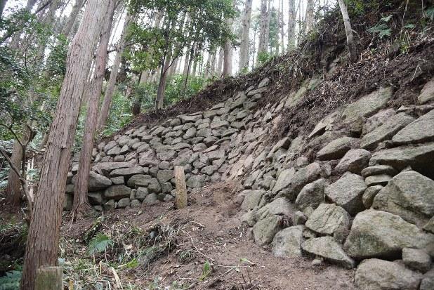 大阪・飯盛城跡に450年以上前の石垣 先駆けとされる信長より3年早く ...