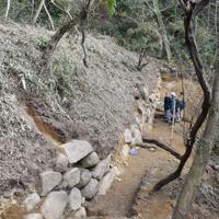 城最大の曲輪のそばで発掘された推定で長さ30メートルの石垣=大阪府大東市の飯盛城跡で(大東市教委提供)