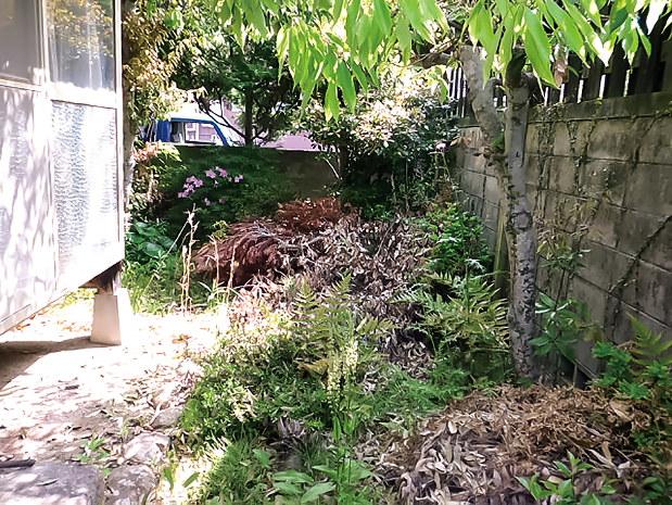 山口県内の空き家の庭の手入れ後