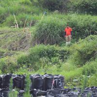 犠牲者を追悼するサイレンに合わせて黙とうする土木作業員の男性=福岡県朝倉市で2019年7月5日午前10時、津村豊和撮影