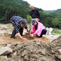 土石流が押し寄せた川沿いに川津桜を植える地元住民ら=広島県呉市安浦地区で2019年7月5日午後3時5分、小出洋平撮影