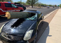 This photo provided by the Northwest Fire District shows where a driver escaped injury when his car's windshield was pierced by the trunk of a saguaro cactus during a wreck on July 10, 2019 on the outskirts of Tucson, Ariz. (Northwest Fire District via AP)