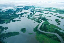 固有種の宝庫であるアマゾン川