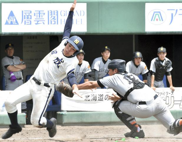 野球 2019 高校 北 北海道 大会