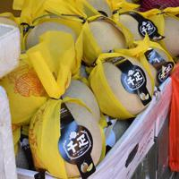 「千疋」と記した包装がされた中国産のメロン=香港・油麻地で2019年6月7日、福岡静哉撮影