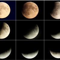 世界各地で7月16─17日、部分月食が観測された。写真はベルリンで16日撮影(2019年 ロイター/Fabrizio Bensch)