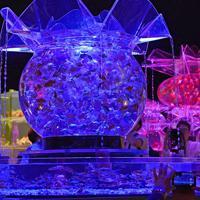 幻想的に照らし出された金魚の水槽を楽しむ人たち=東京都中央区で2019年7月4日午後5時24分、藤井達也撮影