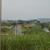 羅城門跡から平城京跡方面を望む。朱雀大路は佐保川(右)の下。電車はJR関西本線=大和郡山市で、栗栖健撮影