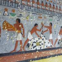 サッカラでは今年4月、古王国時代の色鮮やかな壁画が公開され話題になった=エジプト北部サッカラで、篠田航一撮影
