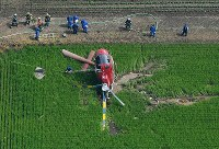 Authorities are seen around the helicopter that crashed in the Ibaraki Prefecture city of Chikusei on July 29, 2019, in this photo taken from a Mainichi Shimbun helicopter. (Mainichi/Kimi Takeuchi)