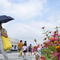 朝から強い日差しとなる中を歩く人たち=東京・台場で2019年7月29日午前9時56分、丸山博撮影