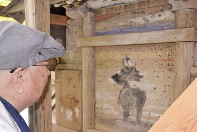 諏訪神社本殿の板壁に描かれた「平将平」と上方の「参詣」の図とみる絵を調査する歴史研究家の染谷洌さん=埼玉県小鹿野町で