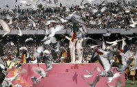 1968 Mexico City Olympics -- A total of 10,000 pigeons are released during the Olympic Oath.