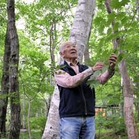 八ケ岳倶楽部の雑木林を散策する柳生さん=山梨県北杜市で