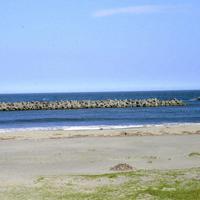 東日本大震災以降、閉鎖されている荒浜海水浴場=宮城県亘理町荒浜で2019年8月5日、遠藤大志撮影