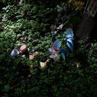 御巣鷹の尾根では、いつ置かれたかわからない古い供え物が静かに銘標を彩っていた=群馬県上野村で2019年8月12日午前7時半、喜屋武真之介撮影