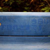 御巣鷹の尾根に続く登山道に置かれたベンチ。「お疲れさまです」などと書かれた文字は、かすれて消えかかっていた=群馬県上野村で2019年8月12日午前7時13分、喜屋武真之介撮影