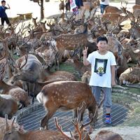 換気口付近に集まるシカに驚き写真を撮る観光客ら=奈良市で2019年8月8日午後5時26分、川平愛撮影