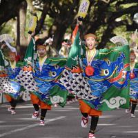 よさこい大賞に輝いた「とらっくよさこい(ちふれ)」の踊り子たち=高知市で、北村栞撮影