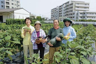 マンションに囲まれた都市部の畑で野菜の少量多品目栽培に取り組む智代さん(右から2人目)、律子さん(同3人目)ら高木さんの家族=福岡市西区で