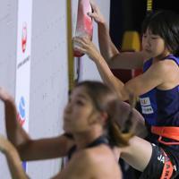 スピード女子予選、60位となり予選敗退となった森秋彩=東京・エスフォルタアリーナ八王子で2019年8月17日、宮武祐希撮影