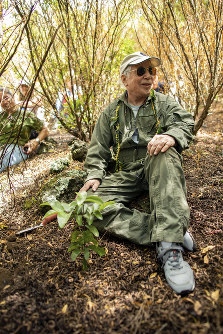 In this Aug. 16, 2019 photo, musician Paul Simon sits after planting a lama tree at Auwahi Forest Reserve on Maui, Hawaii as a part of a growing forest restoration effort on Hawaii's second largest island. (Anna Kim/Honolulu Star-Advertiser via AP)
