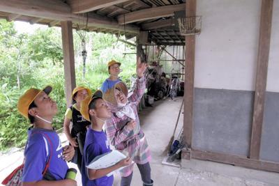 住民の案内でツバメの巣を調べる児童ら=新治小提供