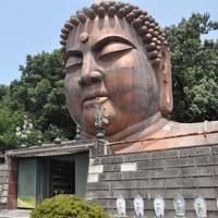 高さ15メートルある大仏の頭像。入場してまず飛び込む威容に、人々はたじろぐ=福井県小松市立明寺町のハニベ巌窟院で、岩壁峻撮影