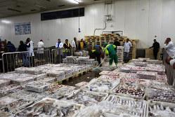 アフリカの漁港にはいまだ低温物流のシステムがない(モロッコ・アガディール漁港)(筆者撮影)