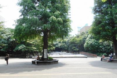 巣鴨プリズンがあった東池袋中央公園=東京都豊島区で2019年8月1日、栗原俊雄撮影
