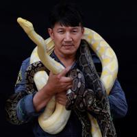 タイの首都バンコクで消防士として働くピノ・プクピニョさんは、消防士として活動してきた16年の間に1万匹以上のヘビを捕まえたと話す「ヘビ捕り名人」だ。写真は今月9日撮影(2019年 ロイター/Soe Zeya Tun)