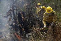 Firefighters work to put out fires in the Vila Nova Samuel region, along the road to the National Forest of Jacunda, near to the city of Porto Velho, Rondonia state, part of Brazil's Amazon, on Aug. 25, 2019. (AP Photo/Eraldo Peres)