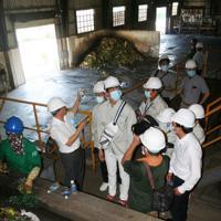 ハイフォン市のコンポスト廃棄物処理施設で、分別作業を見学する生徒たち(中央)。生ゴミから堆肥が作られている